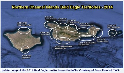 a Northern Channel Islands May 2014 Courtesy of Dave Rempel IWS.JPG