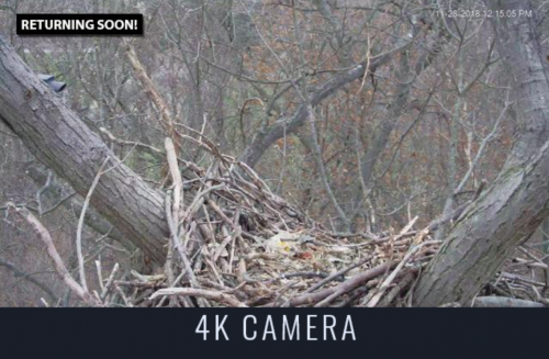 4K cam view.png