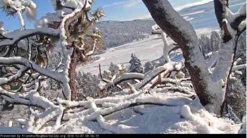 This morning at Big Bear.JPG