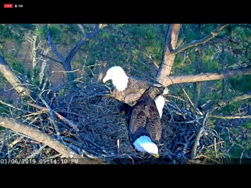 BERRY COLLEGE EAGLES 1 6 19 5 16PM MOM AND DAD CAM 1.jpg