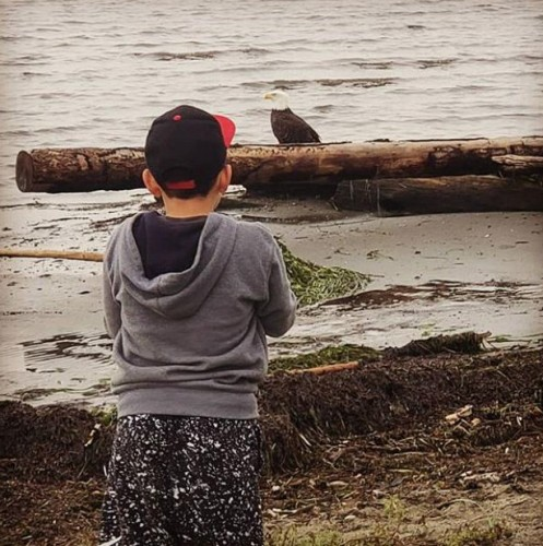 Jayden watching the eagles on the beach at high tide December 2018_edited.jpg