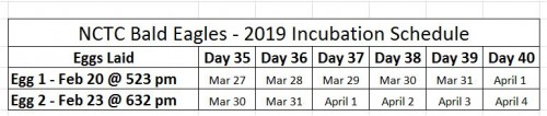 2019 Incubation Schedule NCTC.JPG