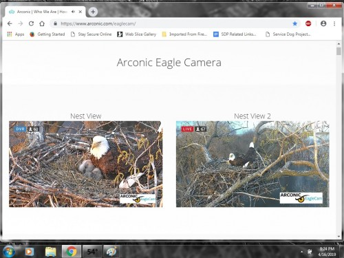 ARCONIC EAGLES 4 16 19 8 25PM TWO LITTLES.jpg