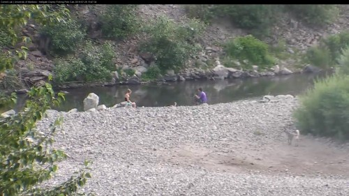 hellgate cam op panned around people enjoying the river 7 47 july 26 owl pole cam .jpg