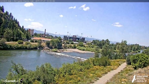 hellgate looking towards the stadium 2 pm july  27 .jpg