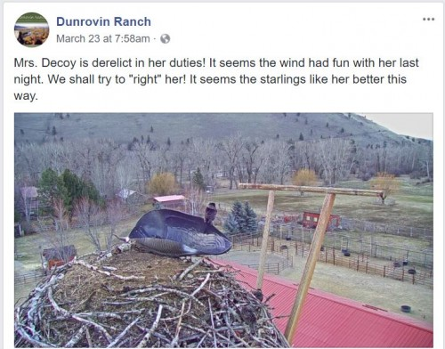 march 23 dunrovin fb.JPG