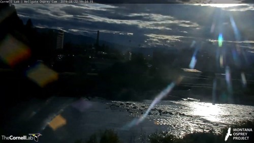 hellgate cam op looked but sun and cloud 7 24 aug 22 .jpg