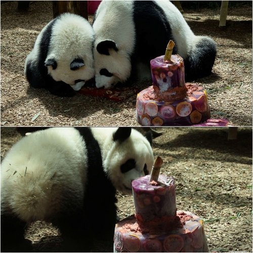 1st birthday luns and lun.jpg